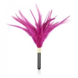 BE HAPPY Plumeau élégant plumes rose