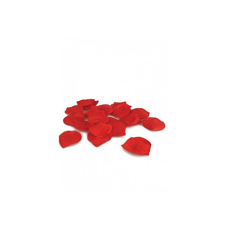 TOUCHE Pétales de roses